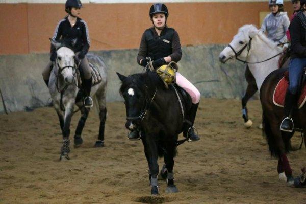 Horse - Ball ♥