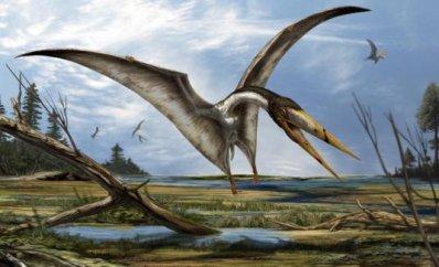 pterosaure