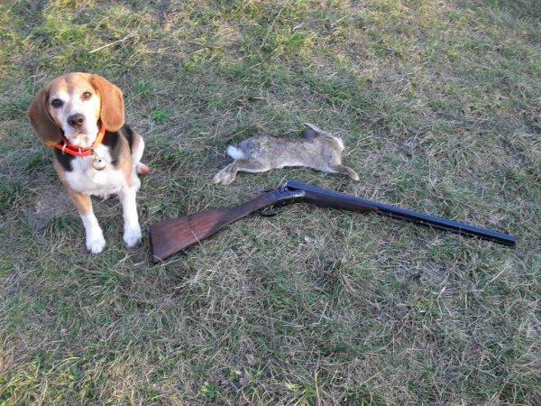 Journée de chasse le 27/12/2015