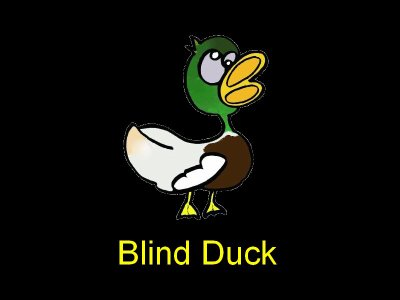 Team Blind Duck :