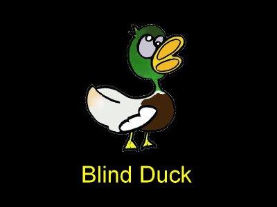 Team Blind Duck :