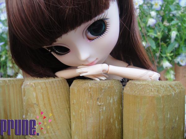 Ma première pullip, ma Prune ... ♥