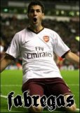 Photo de fabregas-talente-arsenal
