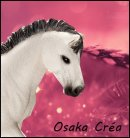Photo de Osaka-Crea