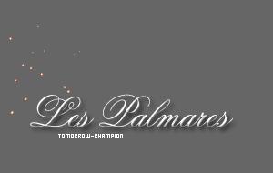 LES PALMARES