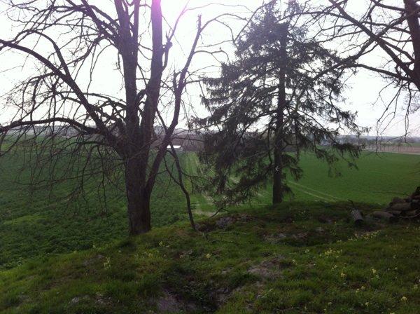 Le paysage des Ardennes