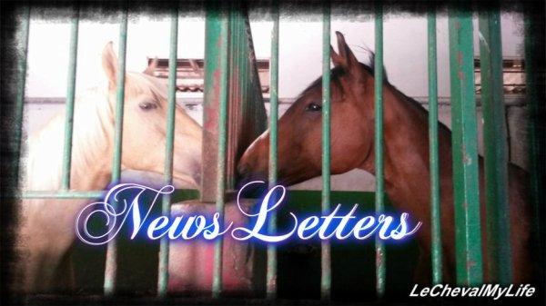 NewsLettres