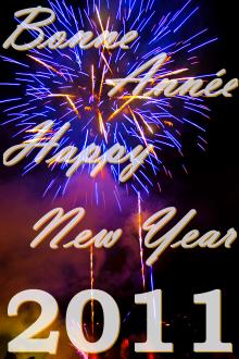 Bonne Année Happy New Year 2011 à tous