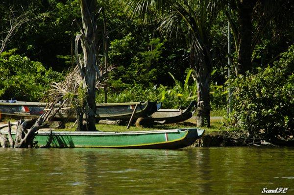 6276 / Départ pour Paramaribo au Surinam.....