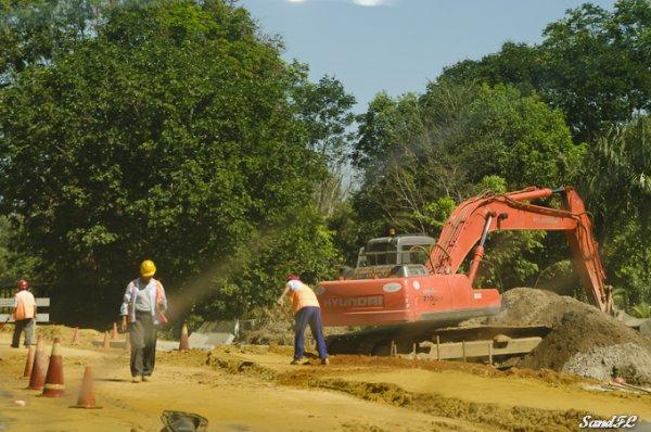 6277 / Vacances à Paramaribo