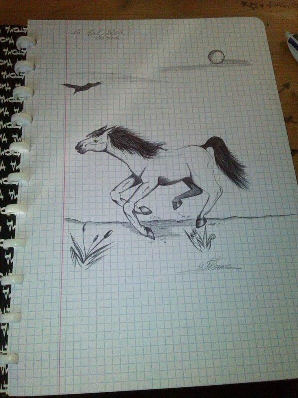 Dessin d'un cheval , Quand on s'ennuie en cours ^^ Hihi