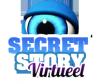 secretstoryvirtueel