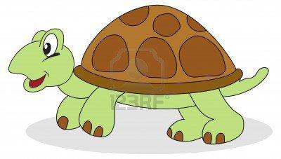 Les tortues ♥