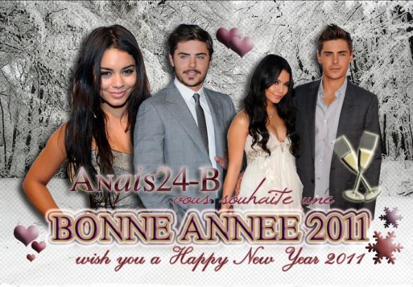 - - ★.•°•.• Bonne Année 2011 •.•°•.★ - -