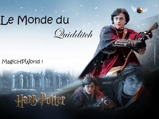 """""""Votre père aurait été fier de vous. Lui aussi était un excellent joueur de Quidditch."""" Minerva McGonagall à Harry"""