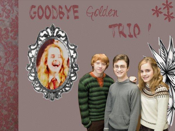 Article Nostalgie : Harry Potter & Les Reliques de La Mort, le dernier épisode d'une saga légendaire.