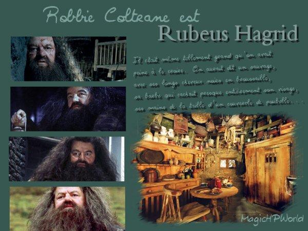 """""""Je confierai ma vie à Hagrid."""" A. Dumbledore"""