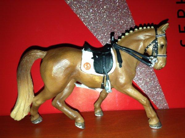Nos nouveau chevaux (1 ancienne)
