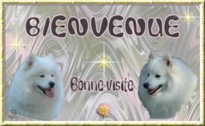 Bienvenue à tout le monde sur mon blog!!!!