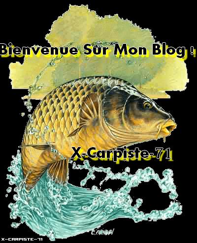 <°))))><  bienvenue sur mon blog  <°))))><