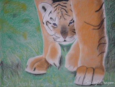 > Tigres²