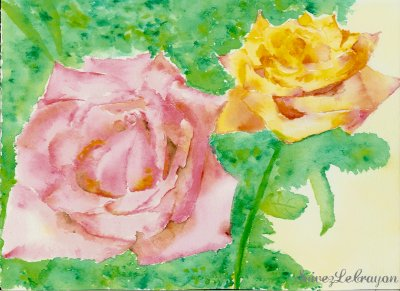 """ Roses_"