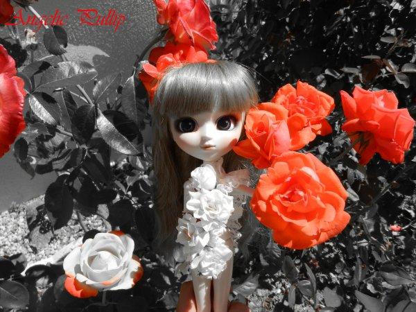 Séance photo fleuri♥