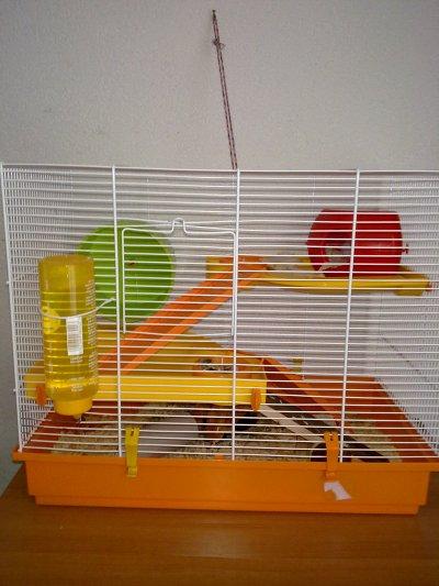 Nouvelle cage