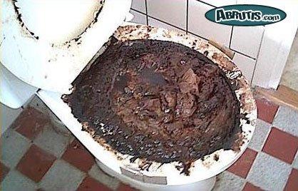 Voilà pourquoi on dit aller aux toilettes