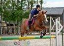 """""""0n ne peut prétendre maîtriser un cheval tant qu'on ne se maîtrise pas soi-même."""""""
