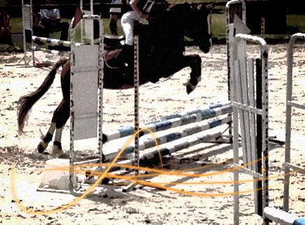 Concours du 15 juin 2014
