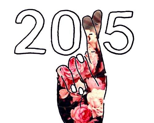 Bonne année 2015! ♥