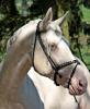 chevauxcompetandco
