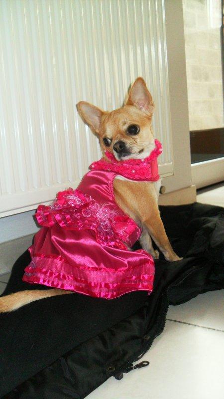 Flora présente ses belles robes ....