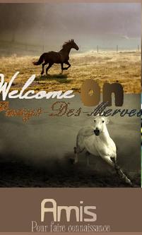 ◊ Bienvenue