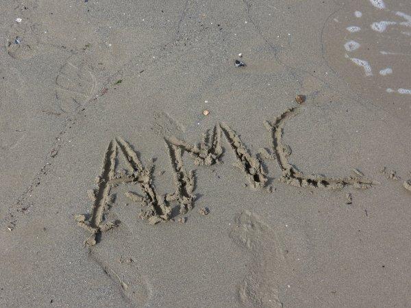 AMC <3