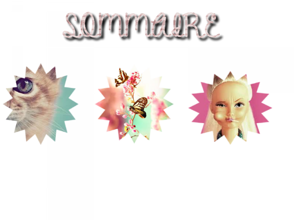▲ sommaire ▲