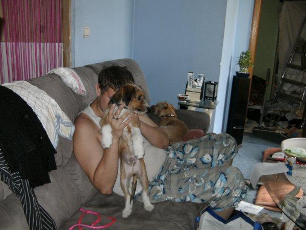 mon frer cher lui a son apartement avec les chiens