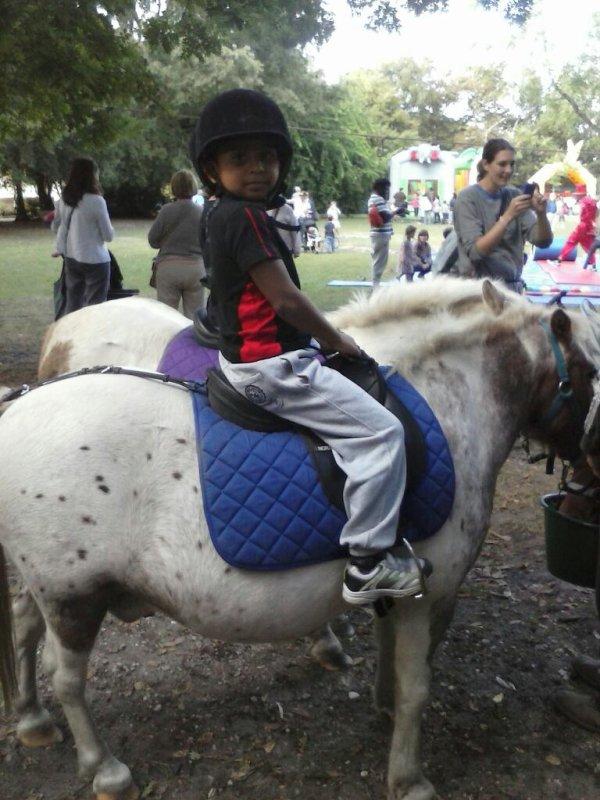 A dos de poney