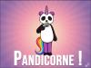 Pandicorne5