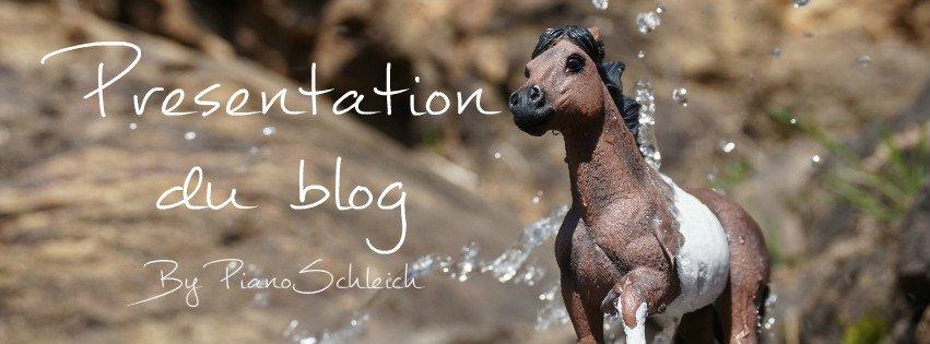 ~ Présentation du blog ~