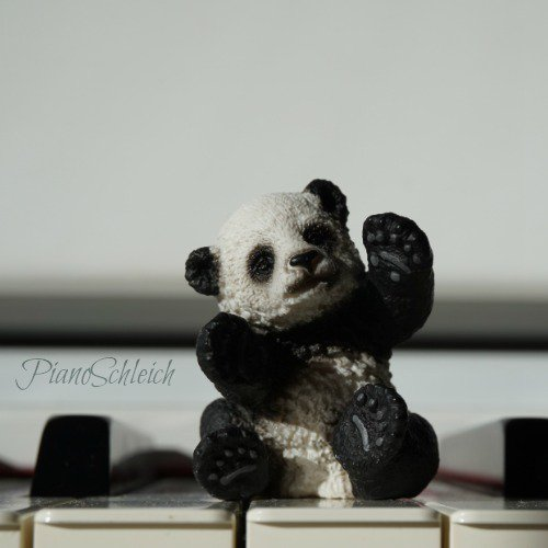 PianoSchleich