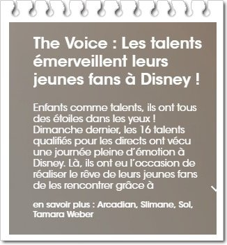 The Voice Disney