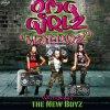 Haterz (Feat. New Boyz)