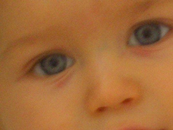 les magnifique yeux bleus de mon petit ange