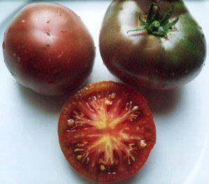 Tomate noire de crim e black krim les tomates une collection le jardinage ma - Noir de crimee ...