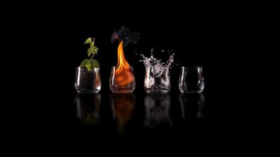 the 4 elements of life