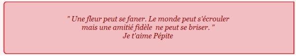 Histoire  de Pépite