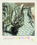 Photo de Respect-aniimaux