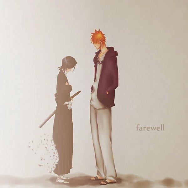 Rukia & Ichigo ...